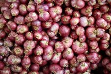 Free Red Shallots Royalty Free Stock Photography - 14590927