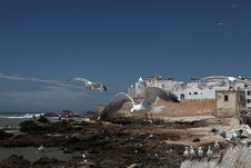 Free Old Hystorical Centre Of Essaouira Stock Photos - 14591293