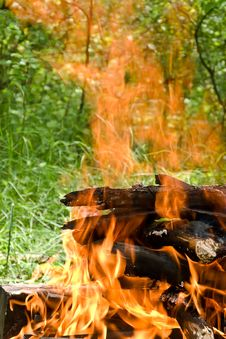 Fire In The Forest Royalty Free Stock Photos