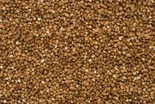 Buckwheat Background Stock Image