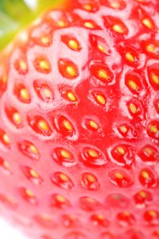 Free Fresh Strawberry Stock Photography - 14596382