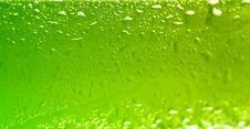 Free Wet Beer Bottle Stock Image - 14596401