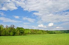 Free Field Of Grass Royalty Free Stock Photos - 14596838