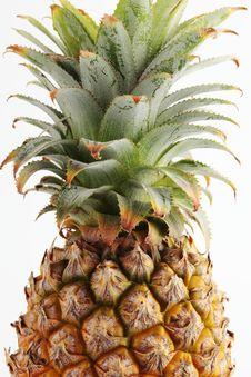 Free Pineapple S Hair Stock Image - 14597411