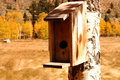 Free Birdhouse Royalty Free Stock Image - 1467156