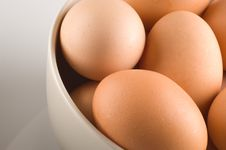 Free Eggs Stock Photo - 1460890