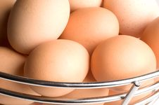 Free Eggs Stock Photos - 1460943