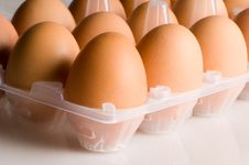 Free Eggs Stock Photography - 1460962