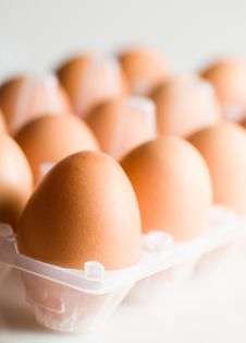 Free Eggs Stock Images - 1460964