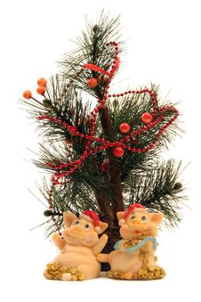 2 Pigs With Fir Tree