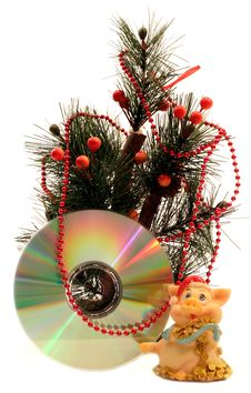 Free Pigs And Cd Under Fir Tree Royalty Free Stock Photos - 1466138