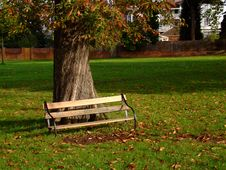 Free Empty Bench In A Park Royalty Free Stock Photography - 1466397