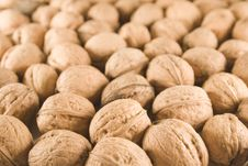 Free Walnuts Stock Images - 1467134