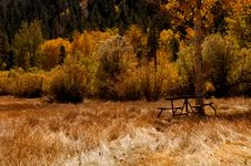 Free Campsite Royalty Free Stock Photos - 1467208