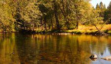 Free Merced River 6 Royalty Free Stock Photo - 1467485