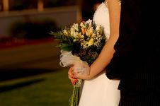 Free Bride And Groom 2 Royalty Free Stock Photo - 1467675