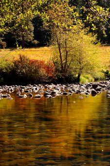 Free Merced River Stock Image - 1467681