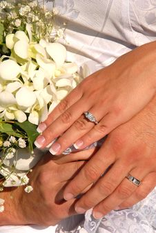 Free Rings Stock Image - 1468181