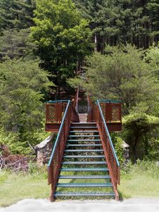 Free Stairs To The Woods Stock Photo - 1469180