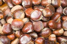 Free Chestnuts Texture Stock Image - 1469231