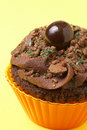 Free Miniature Chocolate Cupcake Stock Photo - 14609660