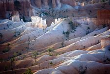 Free Bryce Canyon Hoodoos In The First Rays Of Sun Stock Photography - 14600722