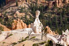 Sandstone Pillar (hoodoo) In Bryce Canyon Royalty Free Stock Photos