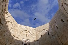 Free Bird Flying Over A Castle Stock Images - 14601734