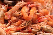 Boiled Prawns At Market Stock Photography