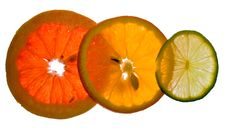 Free Citrus Fruits Royalty Free Stock Photography - 14602757
