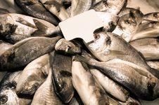Free Fish Market Royalty Free Stock Photography - 14603177