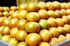 Free Oranges Stock Images - 14603224