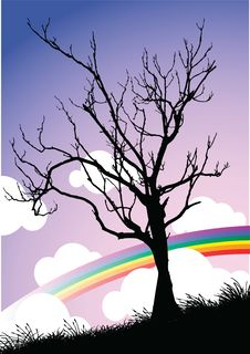 Free Tree Royalty Free Stock Photography - 14604057