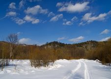 Free Landscape With Winter Wood Road Stock Images - 14604594