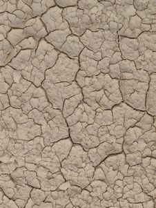 Free Cracked Land Stock Image - 14604951