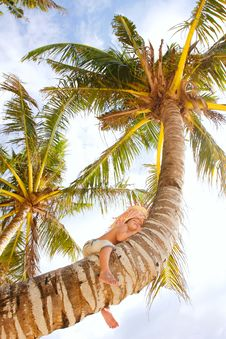 Happy Boy On Palm Tree Stock Images