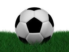 Free Soccer Ball On Grass Stock Image - 14605651