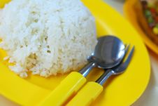 Free Mealtime With White Rice Royalty Free Stock Photography - 14606117