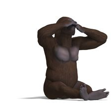 Free Gorilla Not Seeing. Rendering With Clipping Path Stock Images - 14606144