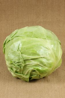 Free Cabbage Royalty Free Stock Photography - 14606427