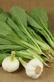 Free Garlic And Small Chinese Cabbage, Stock Image - 14606501
