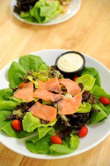 Free Salad Stock Photo - 14607050