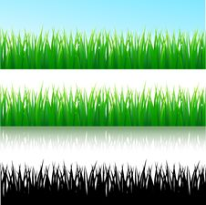 Free Grass Background Royalty Free Stock Images - 14609599