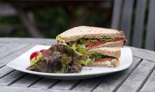 Free Smoked Salmon Sandwich Royalty Free Stock Image - 14623536