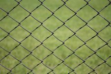 Free Metal Grid On A Green Background Stock Images - 14624024