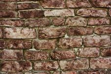 Free Brick Wall Royalty Free Stock Photos - 14624958
