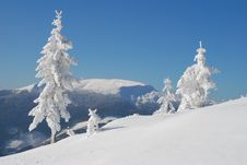 Free Winter Hillside Royalty Free Stock Photo - 14625665