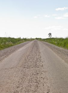 Free Dirt Road Royalty Free Stock Photo - 14626345