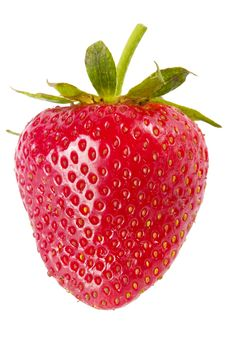 Free Strawberry Stock Photos - 14627913