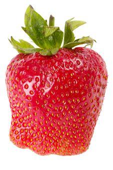 Free Strawberry Stock Image - 14627931